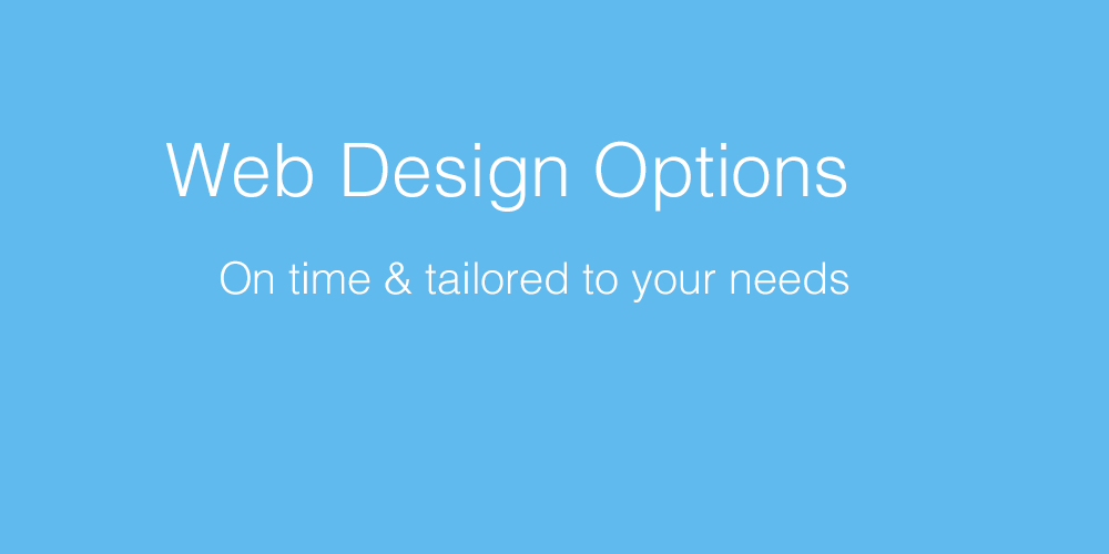 website_options